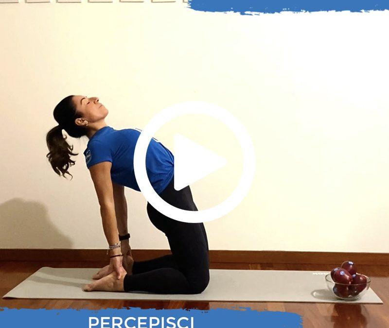 La posizione del cammello per lavorare sulla flessibilità della schiena