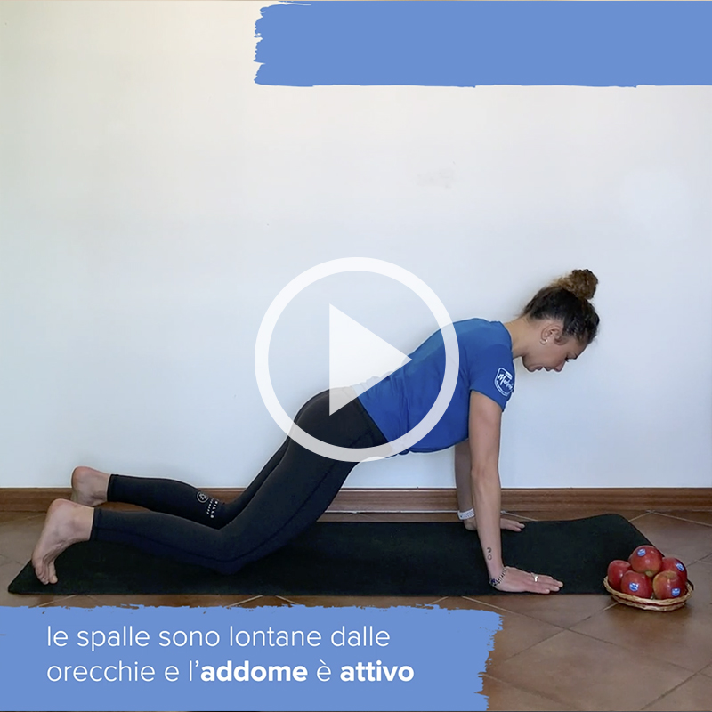 forma-circuito-braccia-marlene-italia